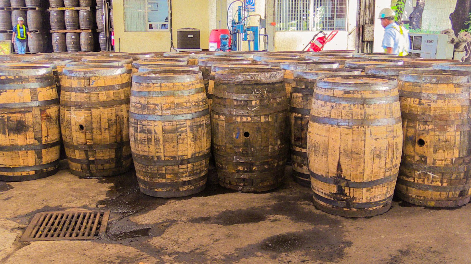 flor-de-cana-barrels