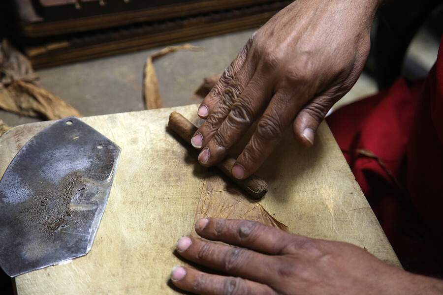 A hand rolled cigar nears completion