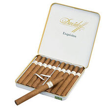 Exquisitos, , jrcigars